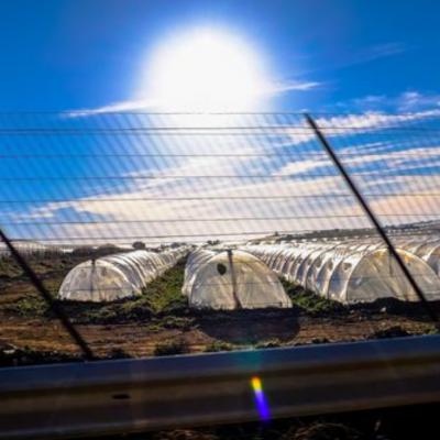 如何降低全球性溫室氣體排放?用能源重新佈署來解