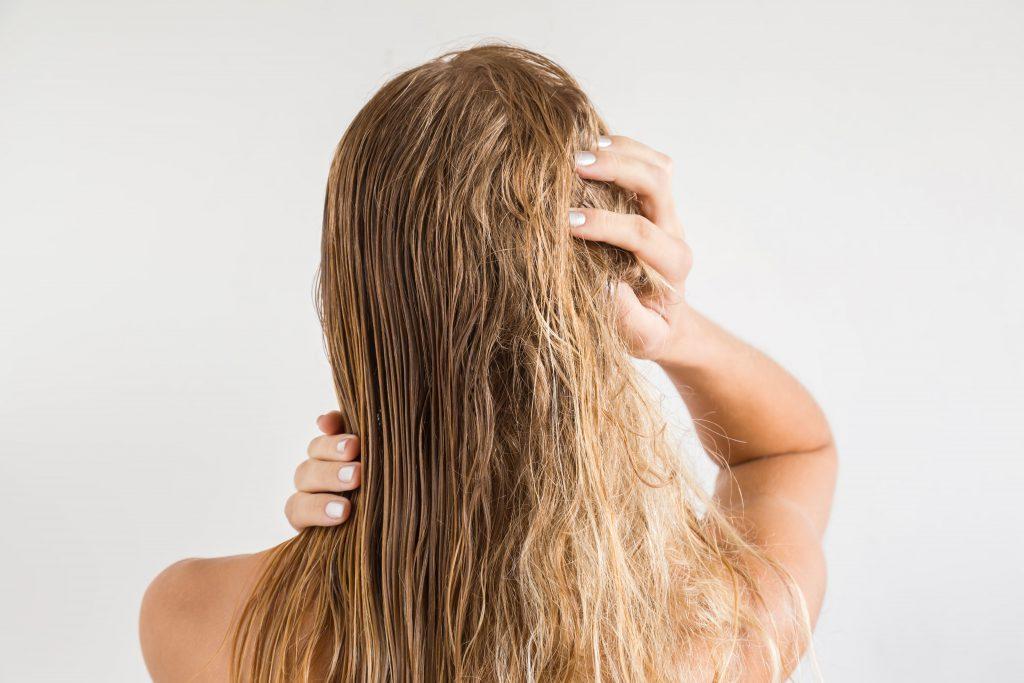 護髮 染燙 洗髮